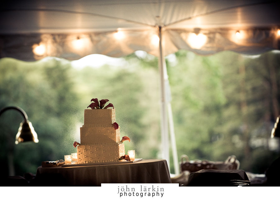 Rebecca & Dave\'s Oak Hill Wedding